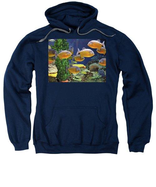 Under The Seen World 5 Sweatshirt
