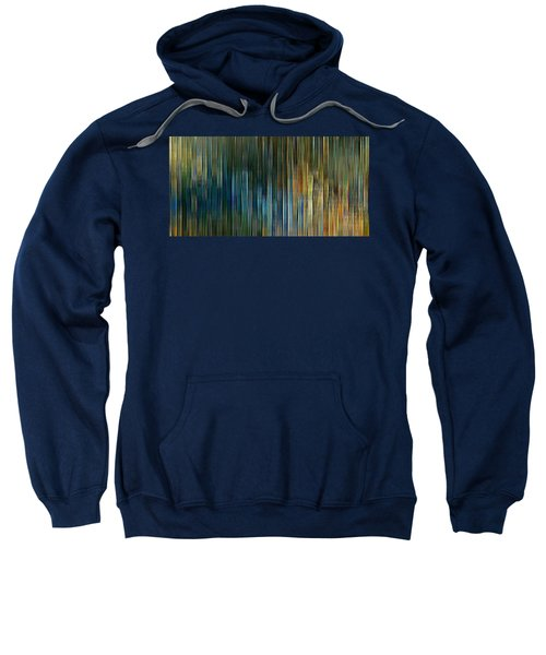 Urban Desert Sweatshirt