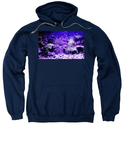 Sweatshirt featuring the photograph Uw Coral Stone 2 by Francesca Mackenney
