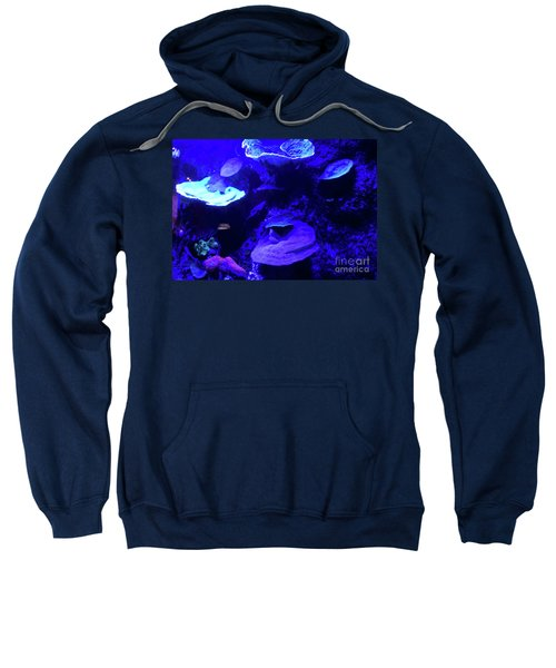 Sweatshirt featuring the photograph Uw Neon Coral by Francesca Mackenney