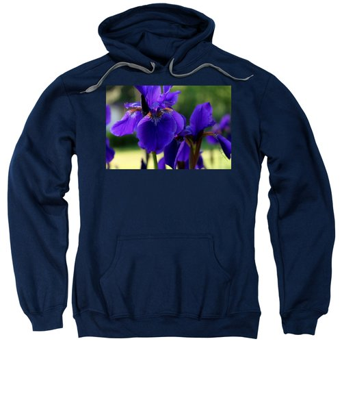 Sweatshirt featuring the photograph Velvet And Silk by Hanne Lore Koehler
