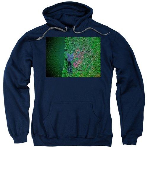 Wind Blown Marsh Tree And Water Sweatshirt