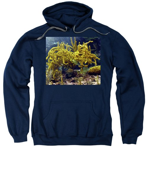 Sweatshirt featuring the photograph Yellow Coral Dance by Francesca Mackenney