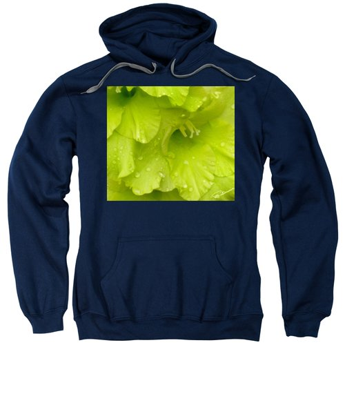 Yellow Gladiola Refreshed Sweatshirt