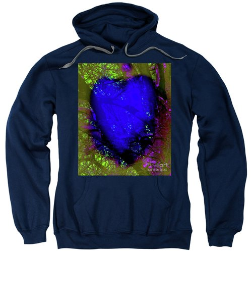2-16-2009abcdefg Sweatshirt