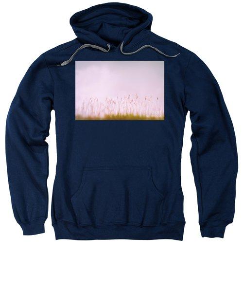 Baltic Sea #4007 Sweatshirt