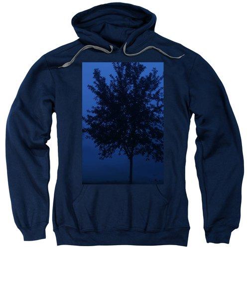 Blue Cherry Tree Sweatshirt
