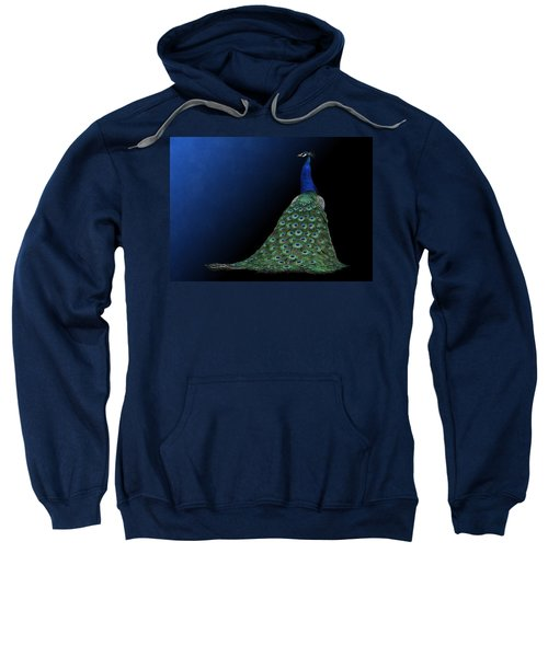 Dressed To Party - Male Peacock Sweatshirt