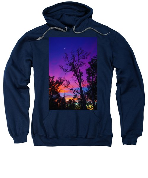 Forest Colors Sweatshirt
