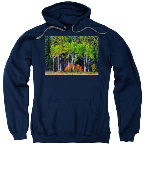 Green Aspens Red Bushes Sweatshirt