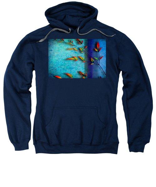 La Branche Sweatshirt