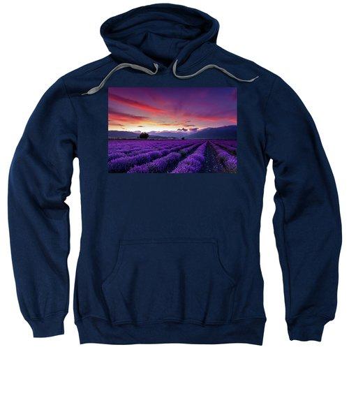 Sweatshirt featuring the photograph Lavender Season by Evgeni Dinev