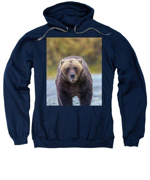 Lazy C Angry Bear  Sweatshirt