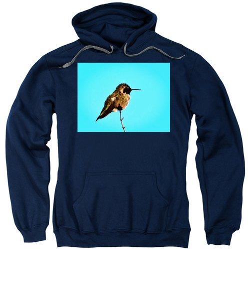 Perfect Posing Sweatshirt