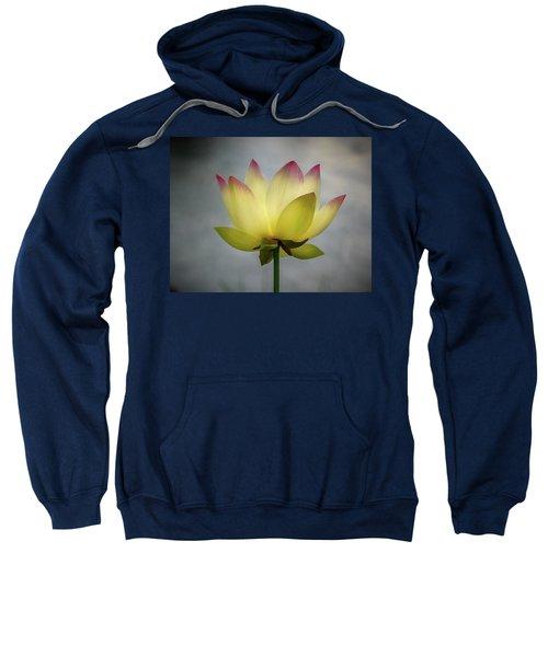 Pink Tipped Lotus Sweatshirt