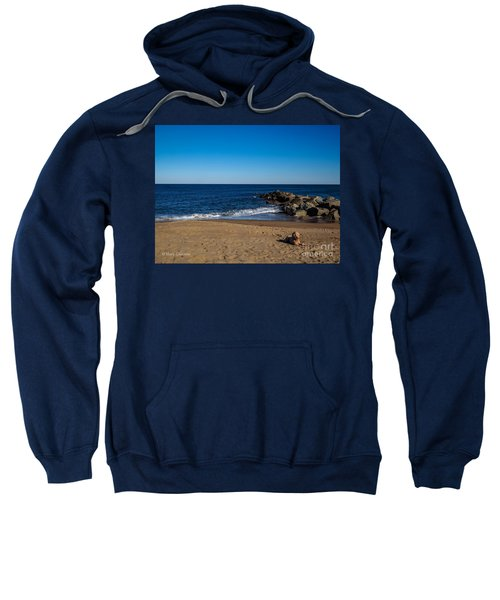 Plum Island Scene Sweatshirt