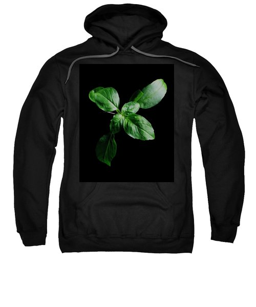 A Sprig Of Basil Sweatshirt