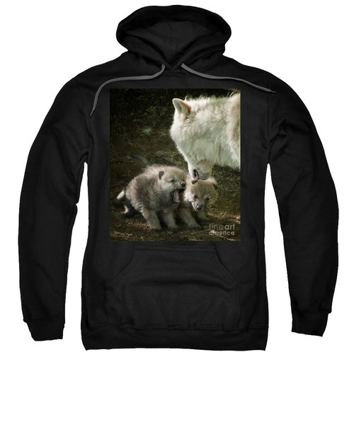Arctic Wolf Pups Sweatshirt
