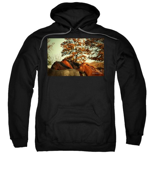 Autumn Wild Horses Sweatshirt