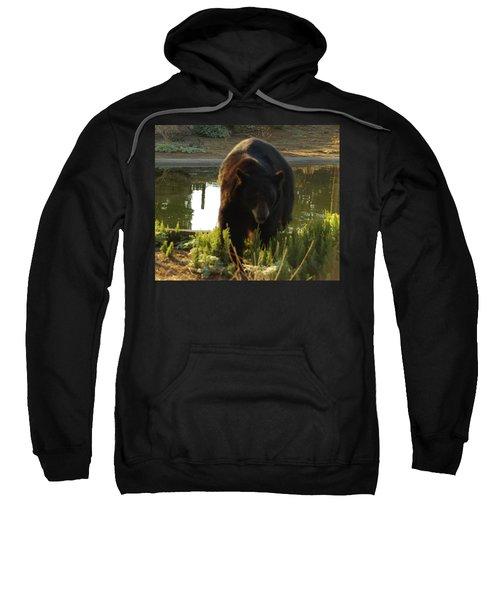Bear 1 Sweatshirt