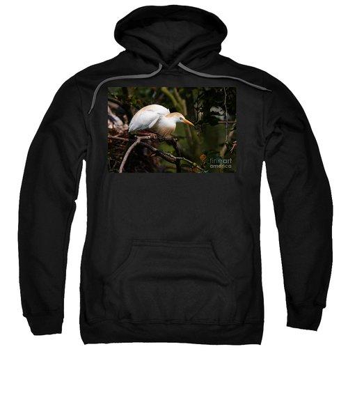 Cattle Egret In A Tree Sweatshirt