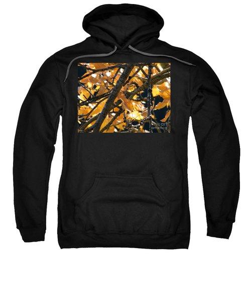 Fall Leaves Sweatshirt