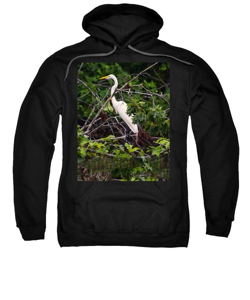 Great White Egret Sweatshirt
