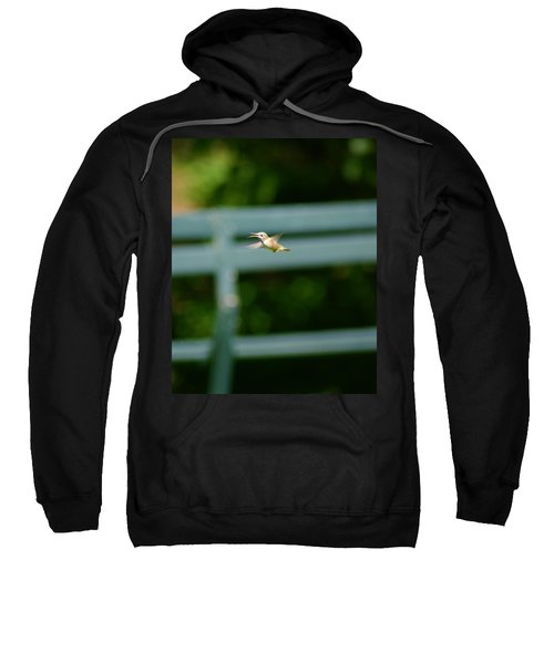 Hummer In Flight Sweatshirt