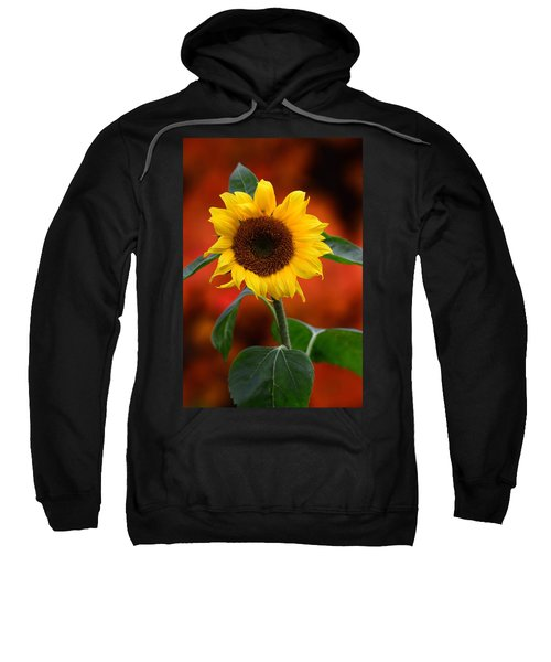 Last Sunflower Sweatshirt