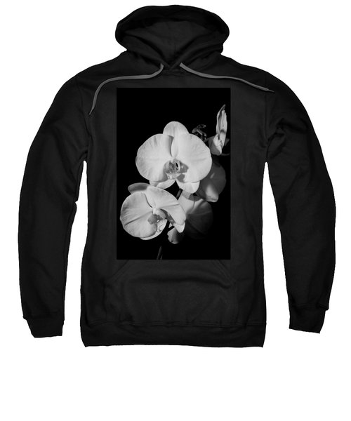 Moth Orchid Bw Sweatshirt