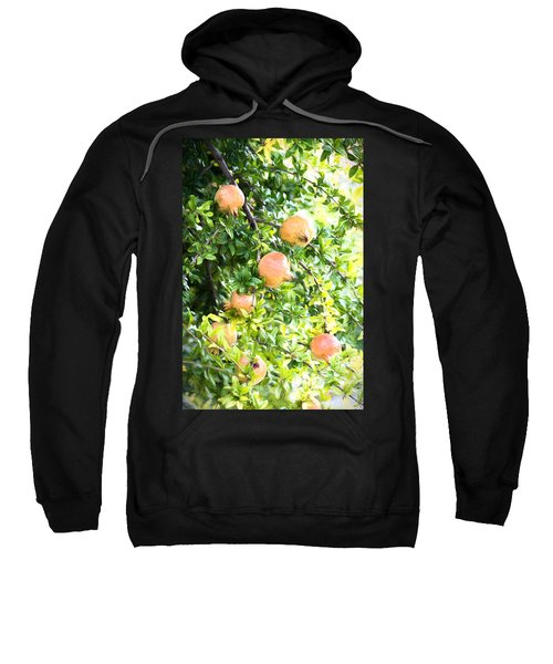 Pomegranate 2 Sweatshirt