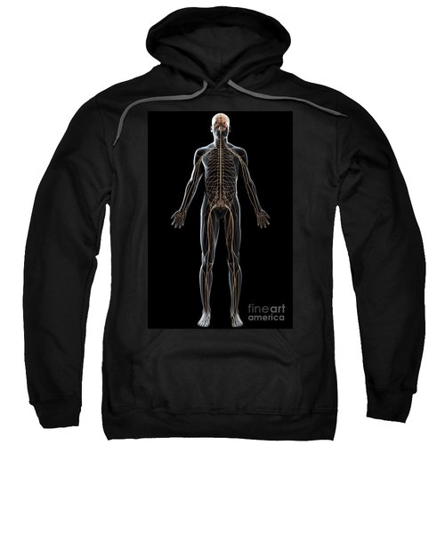 The Nerves Of The Body Sweatshirt