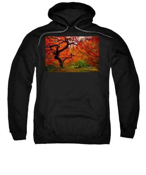 Tree Fire Sweatshirt