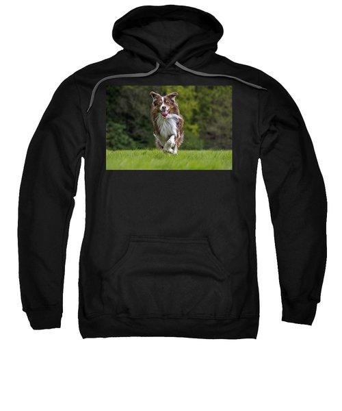 140420p079 Sweatshirt