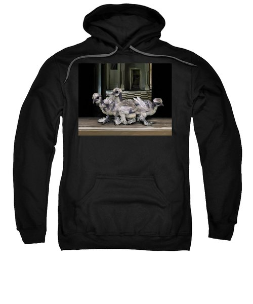 15. Lizard Chicks Sweatshirt