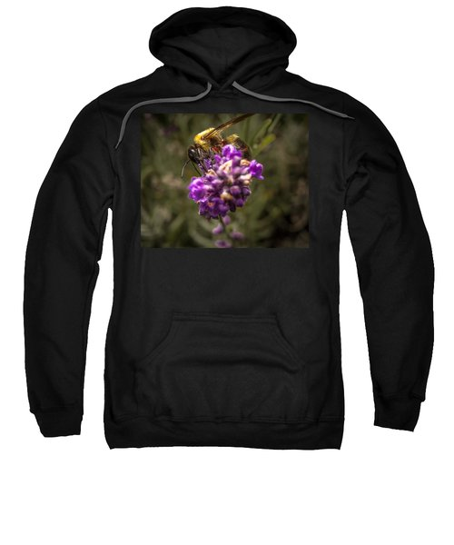 Carpenter Bee On A Lavender Spike Sweatshirt