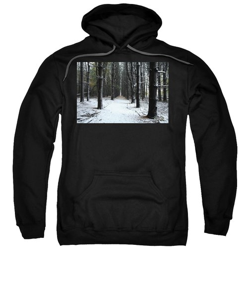 Pines In Snow Sweatshirt