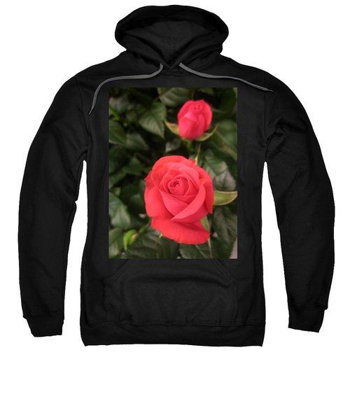 Roses In Red Sweatshirt
