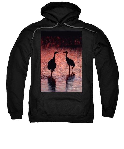 Sandhill Cranes Sweatshirt