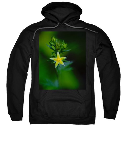 Starflower Sweatshirt