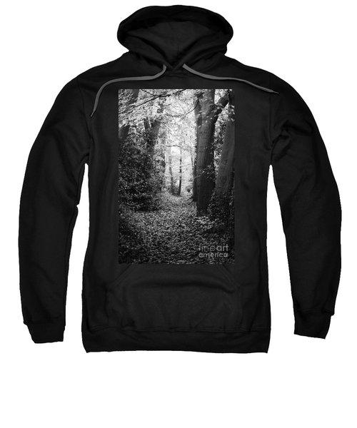 Trees Sweatshirt