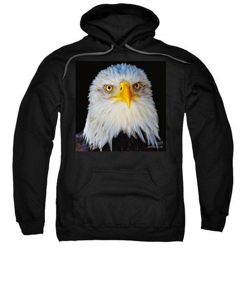 Closeup Portrait Of An American Bald Eagle Sweatshirt