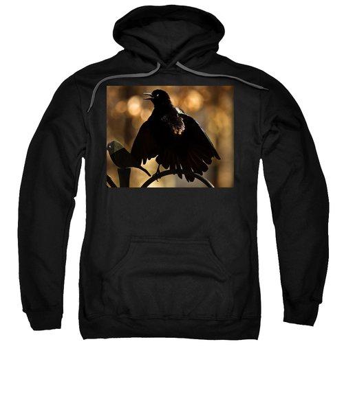 Common Grackle Sweatshirt