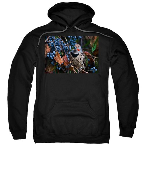 Northern Flicker Sweatshirt