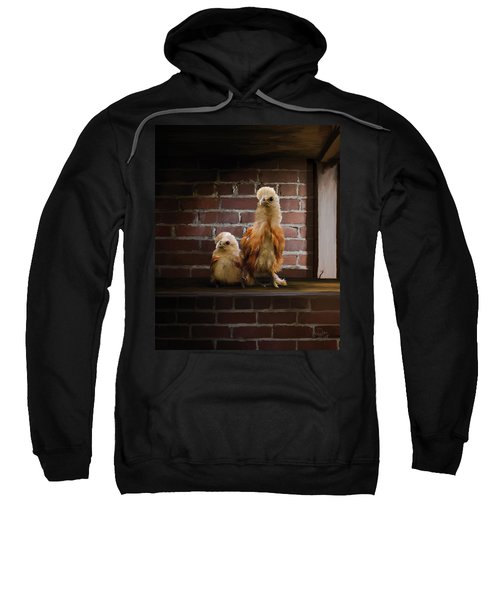 4. Brick Chicks Sweatshirt