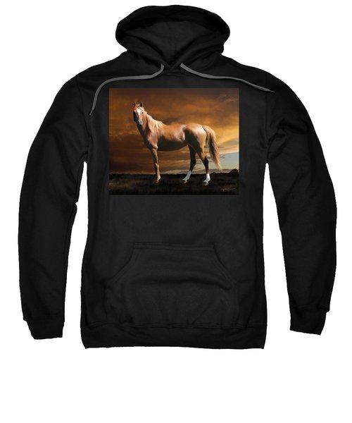5. Fancy Sweatshirt