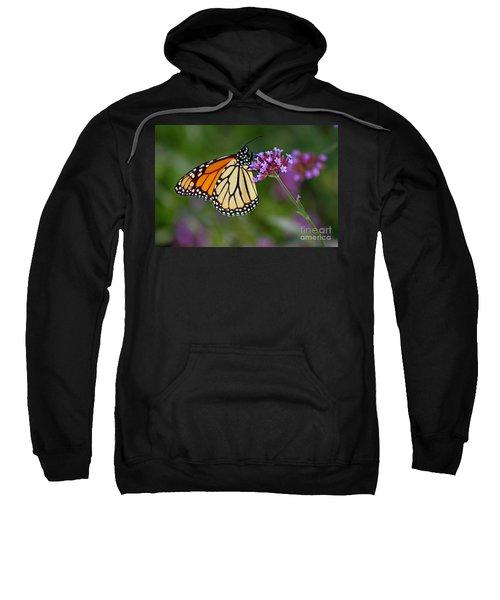 Monarch Butterfly In Garden Sweatshirt