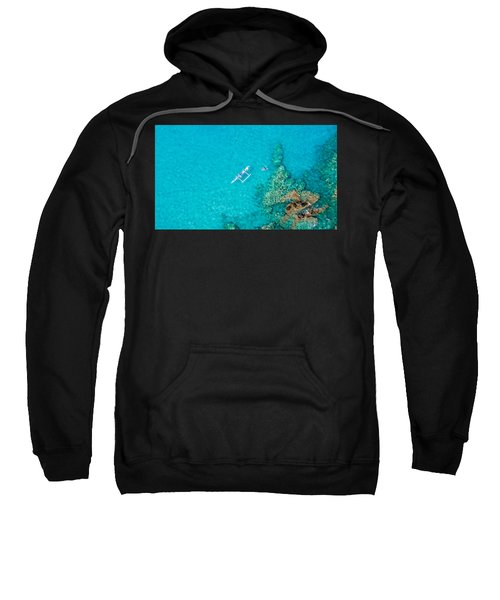 A Bird's Eye View Sweatshirt