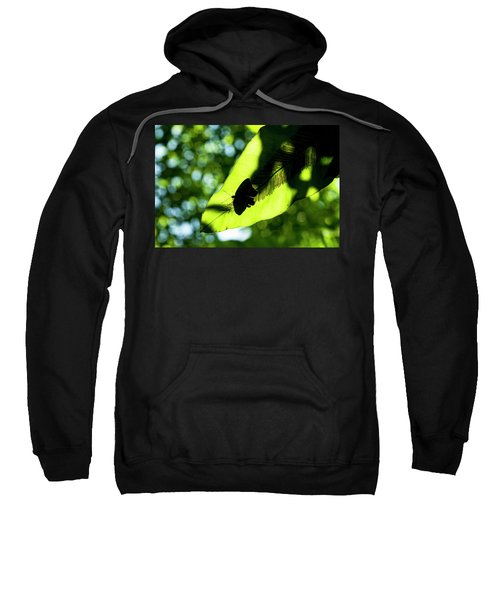 A Butterfly At The Butterfly Park Sweatshirt