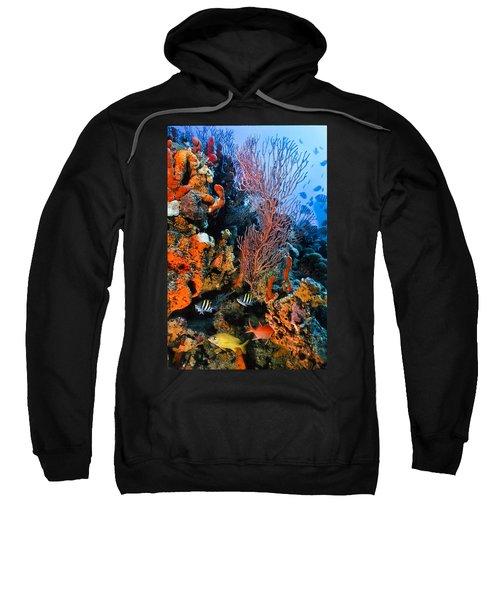 A Colorful Ledge Sweatshirt